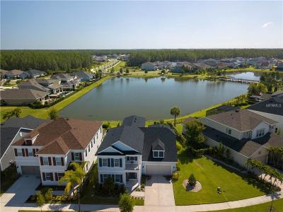 Odessa Single Family Home For Sale: 14761 Caravan Avenue