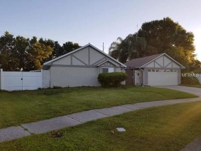 Tampa Single Family Home For Sale: 4141 Rolling Springs Drive