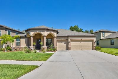Wimauma Single Family Home For Sale: 5016 Jagged Cloud Drive