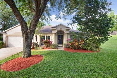 Brandon Single Family Home For Sale: 713 Berry Bramble Drive