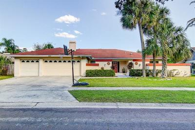 Tampa Single Family Home For Sale: 14005 Wolcott Drive