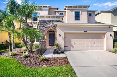 Wesley Chapel Single Family Home For Sale: 4407 Scarlet Loop