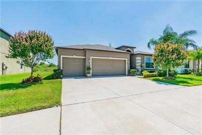 Riverview Single Family Home For Sale: 11613 Brighton Knoll Loop