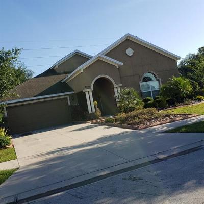 Plant City Single Family Home For Sale: 3001 Via Siena Street