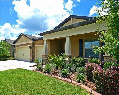 Valrico Single Family Home For Sale: 1527 Banner Elk Street