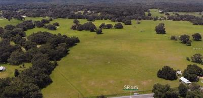 Dade City, San Antonio Residential Lots & Land For Sale: 38928 Arena Road