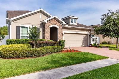 Wesley Chapel Single Family Home For Sale: 2302 Pantucket Drive