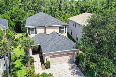 Tampa Palms Single Family Home For Sale: 16050 Bella Woods Drive