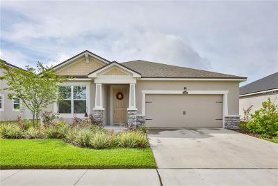 Riverview Single Family Home For Sale: 12405 Prairie Valley Lane