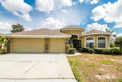 New Port Richey Single Family Home For Sale: 2208 Tarragon Lane