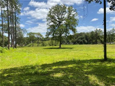 Wesley Chapel Residential Lots & Land For Sale: 29848 New Dutch Lane