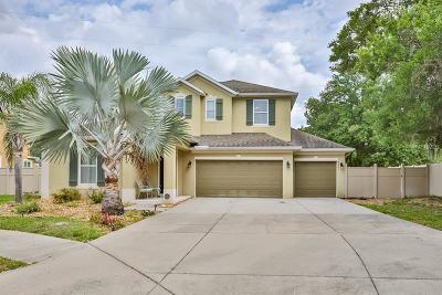 Odessa Single Family Home For Sale: 8261 Nectar Ridge Court