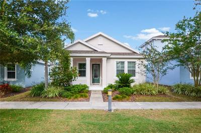 Apollo Beach Single Family Home For Sale: 507 Winterside Drive