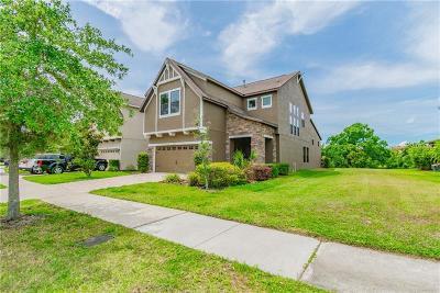 Fishhawk Ranch Single Family Home For Sale: 16320 Egret Crossing Lane