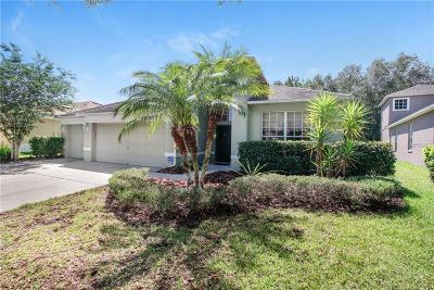 Tampa Single Family Home For Sale: 8207 Pinewood Run Court