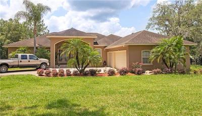 Wesley Chapel Single Family Home For Sale: 7353 Westpoint Drive