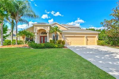 Land O Lakes Single Family Home For Sale: 7300 Night Heron Drive