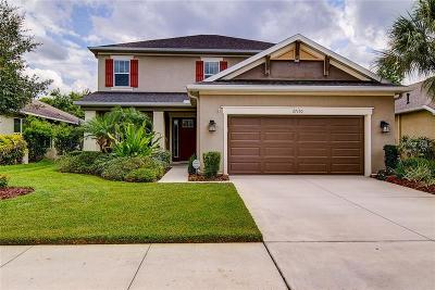 Wesley Chapel Single Family Home For Sale: 27130 Evergreen Chase Drive