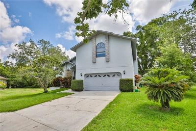 Tarpon Springs Single Family Home For Sale: 1123 Clarissa Court