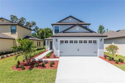 Brooksville Single Family Home For Sale: 8252 Silverbell Loop