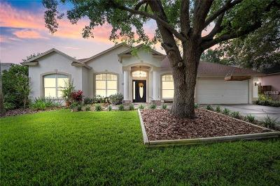 Valrico Single Family Home For Sale: 3813 Triple Jump Street
