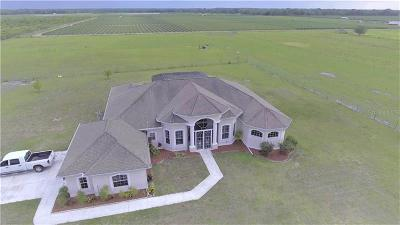 Wimauma Single Family Home For Sale: 15639 Seth Country Lane
