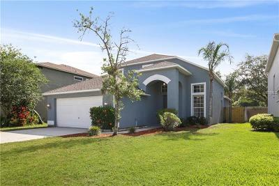 Tarpon Springs Single Family Home For Sale: 3040 Savannah Oaks Circle