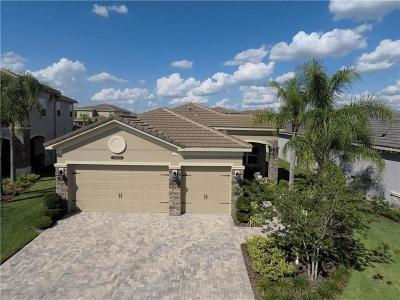 Wesley Chapel Single Family Home For Sale: 30279 Southernwood Court