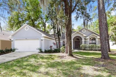 Valrico Single Family Home For Sale: 3803 Hollow Wood Drive