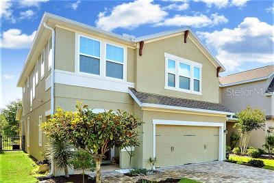 Lithia Single Family Home For Sale: 5911 Egret Landing Place
