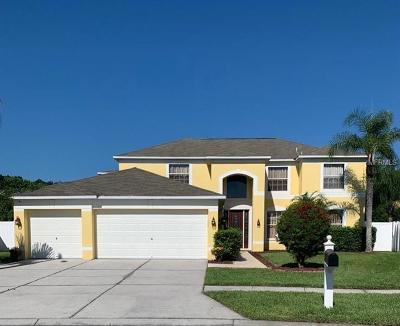 Wesley Chapel Single Family Home For Sale: 26932 Sea Breeze Way