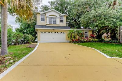 Tarpon Springs Single Family Home For Sale: 1424 Riverside Drive