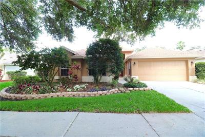 Valrico Single Family Home For Sale: 3134 Bent Creek Drive