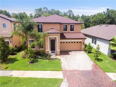 Hillsborough County, Pasco County, Pinellas County Single Family Home For Sale: 15234 Anguilla Isle Avenue