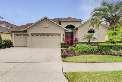 Tampa Single Family Home For Sale: 8343 Old Town Drive