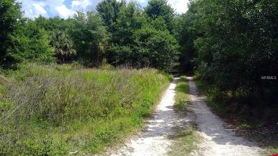 Plant City Residential Lots & Land For Sale: 5224 Clarence Gordon Jr Road