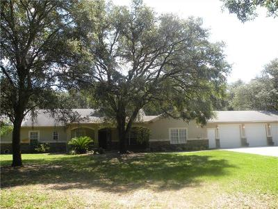 Brooksville Single Family Home For Sale: 15750 Mahoney Drive