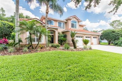 Tampa Single Family Home For Sale: 9163 Highland Ridge Way