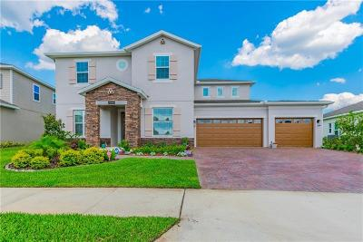 Wesley Chapel Single Family Home For Sale: 7660 Roma Dune Drive