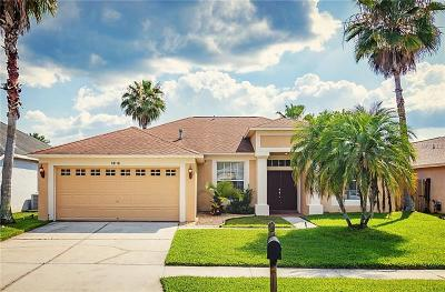 Tampa Single Family Home For Sale: 18116 Palm Breeze Drive