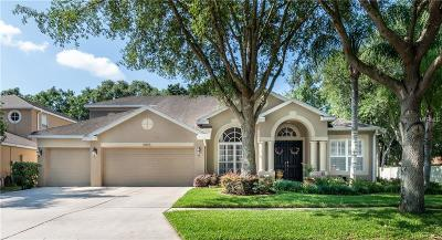 Hillsborough County Single Family Home For Sale: 5803 Browder Road