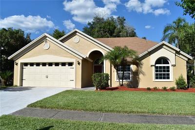 Tampa Single Family Home For Sale: 8933 Bayaud Drive