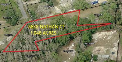 Wesley Chapel Residential Lots & Land For Sale: 6838 Nathan Court