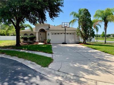 Hudson Single Family Home For Sale: 12153 Southbridge Ter