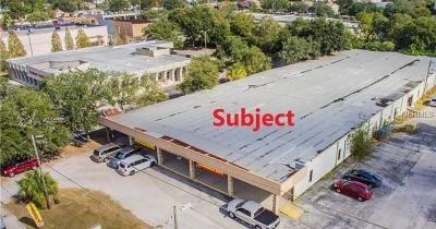 Commercial For Sale: 2711 N Macdill Avenue