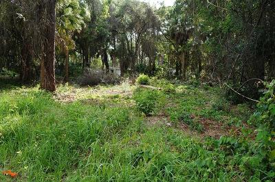 Port Richey Residential Lots & Land For Sale: 10593 Scenic Drive