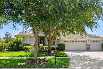 Lithia Single Family Home For Sale: 15721 Ibisridge Drive