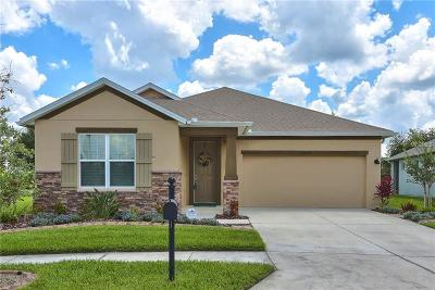 Wesley Chapel Single Family Home For Sale: 32624 Rapids Loop