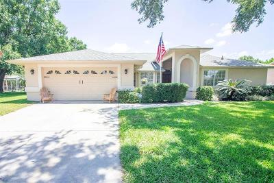 Valrico Single Family Home For Sale: 3909 Castle Key Lane