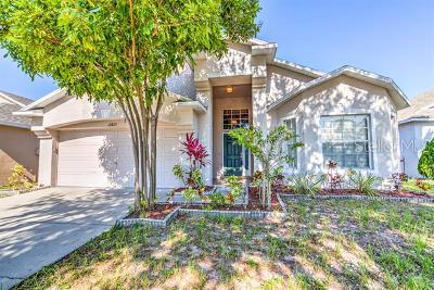 Gibsonton Single Family Home For Sale: 12823 Kings Lake Drive